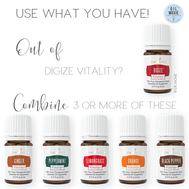 Out of DiGize Vitality?  Use what you have!