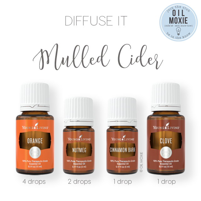 Mulled Cider Diffuser Recipe
