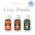 Orange Pomander Diffuser Recipe