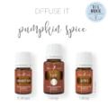 Pumpkin Spice Diffuser Recipe